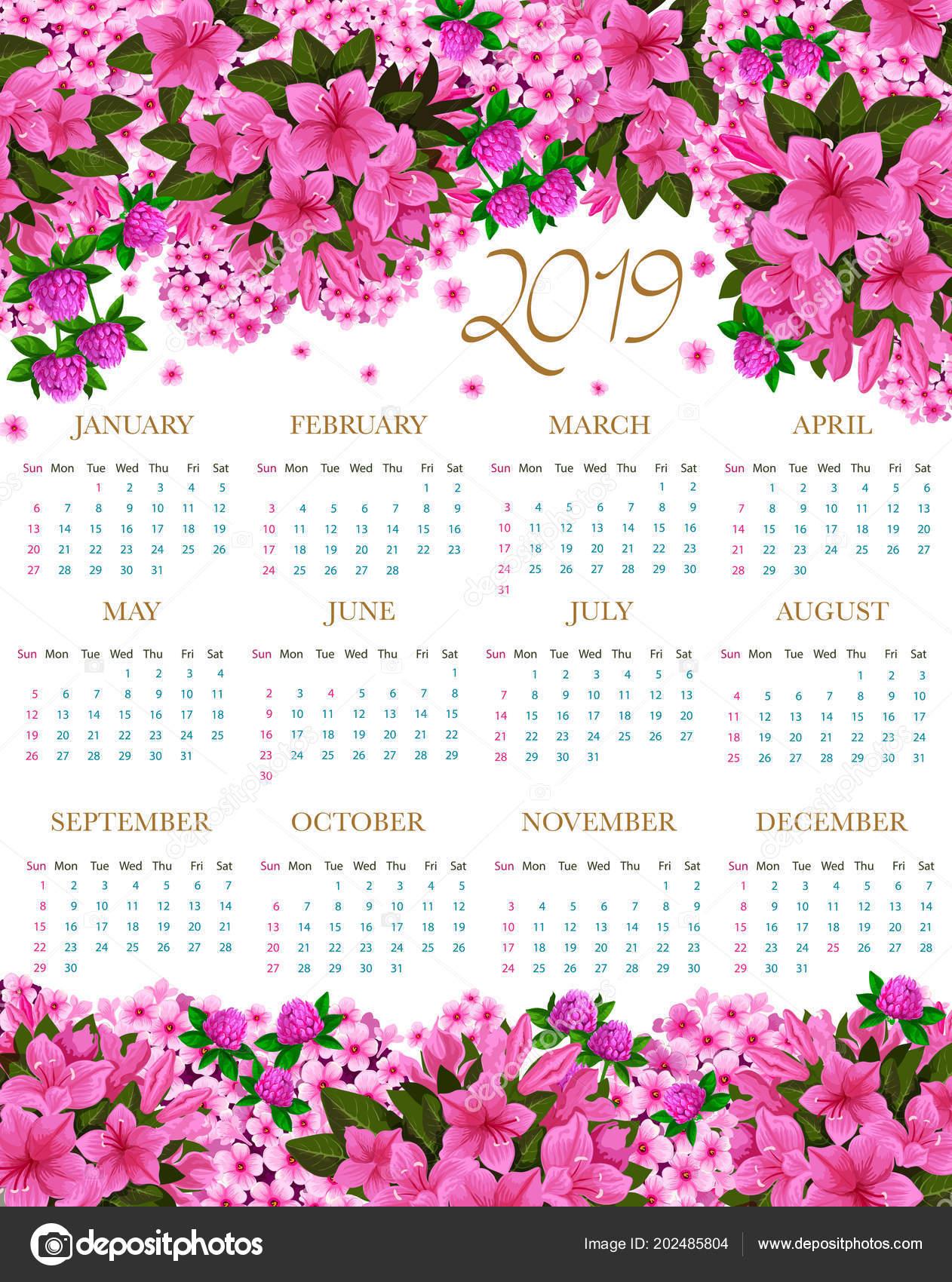 Calendario 2019 Rosa Portugues.Calendario 2019 Vector De Flores De Primavera Rosa Archivo