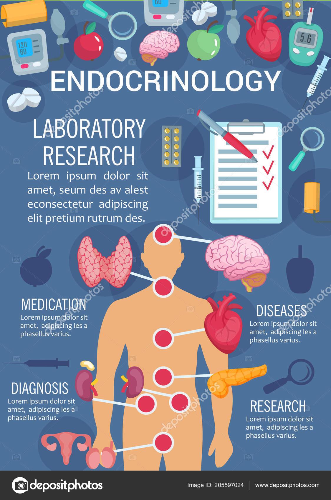 Cartel de Endocrinología con sistema endocrino humano — Archivo ...