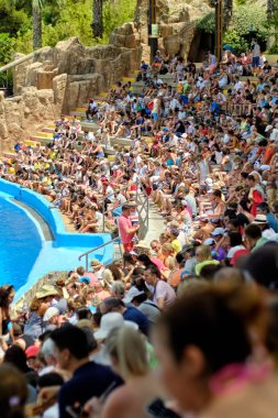 Benidorm, Spain - July 26,2019: Auditorium crowd of people seated on benches in row watching performance in Mundomar animal park located in Benidorm, fun of children and family, Benidorm, Spain stock vector