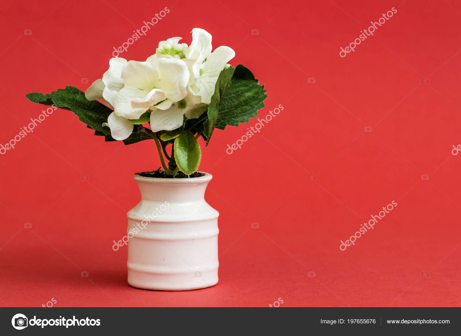Blanche Fleur Artificielle Pot Fleurs Porcelaine Blanche Sur Fond