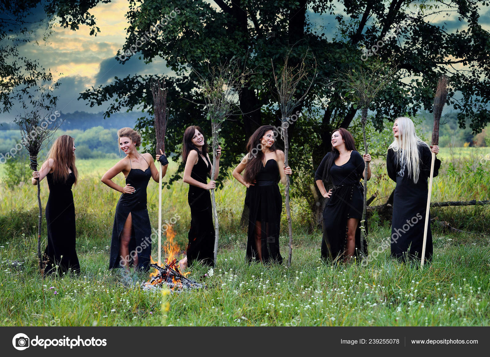 Witches Brooms Campfire Meadow — Stock Photo © mallivan #239255078