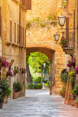 Beautiful street in a small old village Pienza, Tuscany, Europe. stock vector