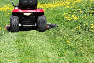 Tractor lawn mower cutting the grass in springtime .