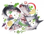 Flying seabass fishes and different spices. Flying motion effect. File contains clipping path.