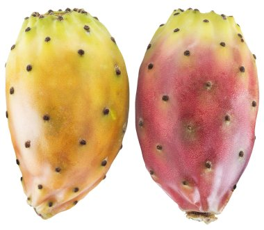 Prickly pears or opuntia berries on white background. File contains clipping path.