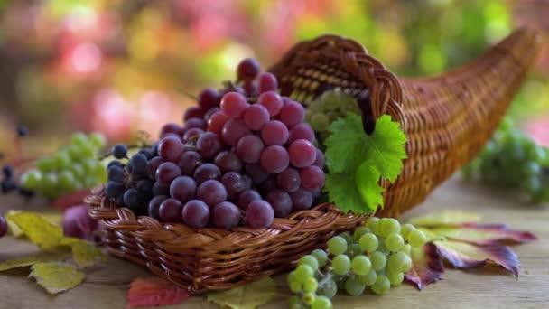Érett szőlőfürtök egy kosárban egy régi szüreti asztalon. Mögött napfényes őszi háttér gyönyörű bokeh.