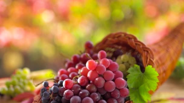 Ripe bunches of grapes in a basket on an old vintage table. Behind a sunny autumn background with beautiful bokeh.
