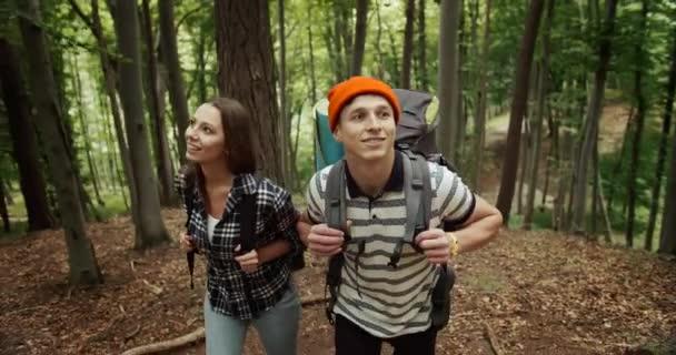 A turisták megy felfelé az erdőben