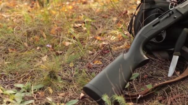 Shotgun lőszer és vintage bandolier a packpack, az őszi fenyves erdőben
