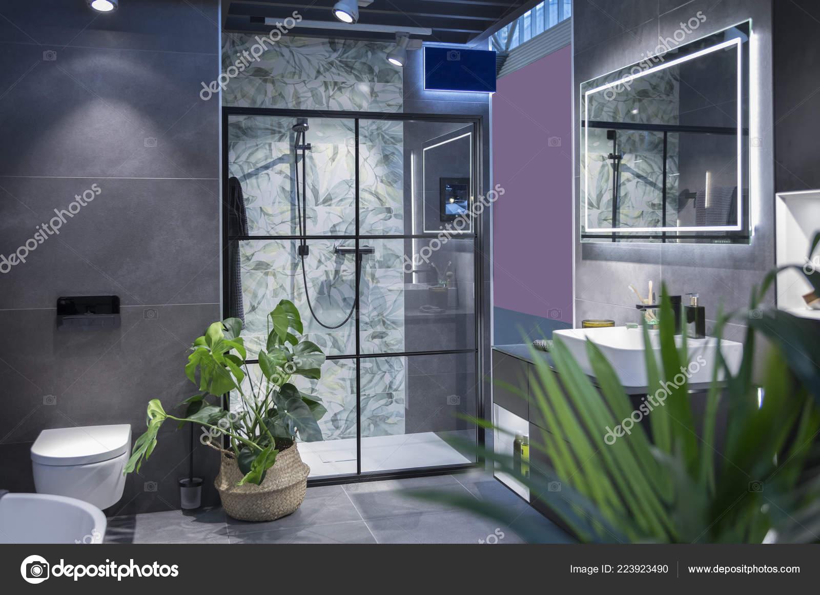 Interieur Moderne Salle Bain Avec Une Decoration Plante