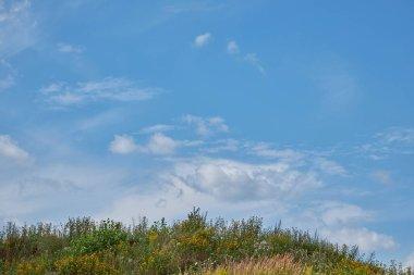 "Картина, постер, плакат, фотообои ""травянистый холм против голубого неба с облаками картины пейзаж"", артикул 397113706"