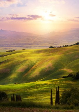 Italy; San Quirico d'Orcia; sunset over Tuscan Valdorcia rolling hills stock vector