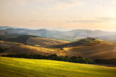 Italy. Tuscany farmland and rolling hills; summer countryside Landscape stock vector