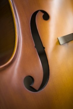 Closeup detail view at the upright bass