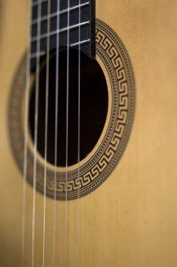 Close up detail of the acoustic guitar