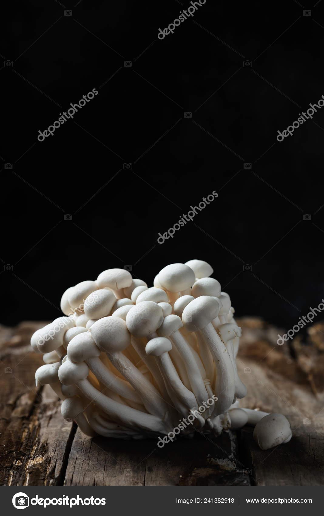 Closeup Bunch Raw Japanese Bunapi Shimeji Mushrooms Also Known White