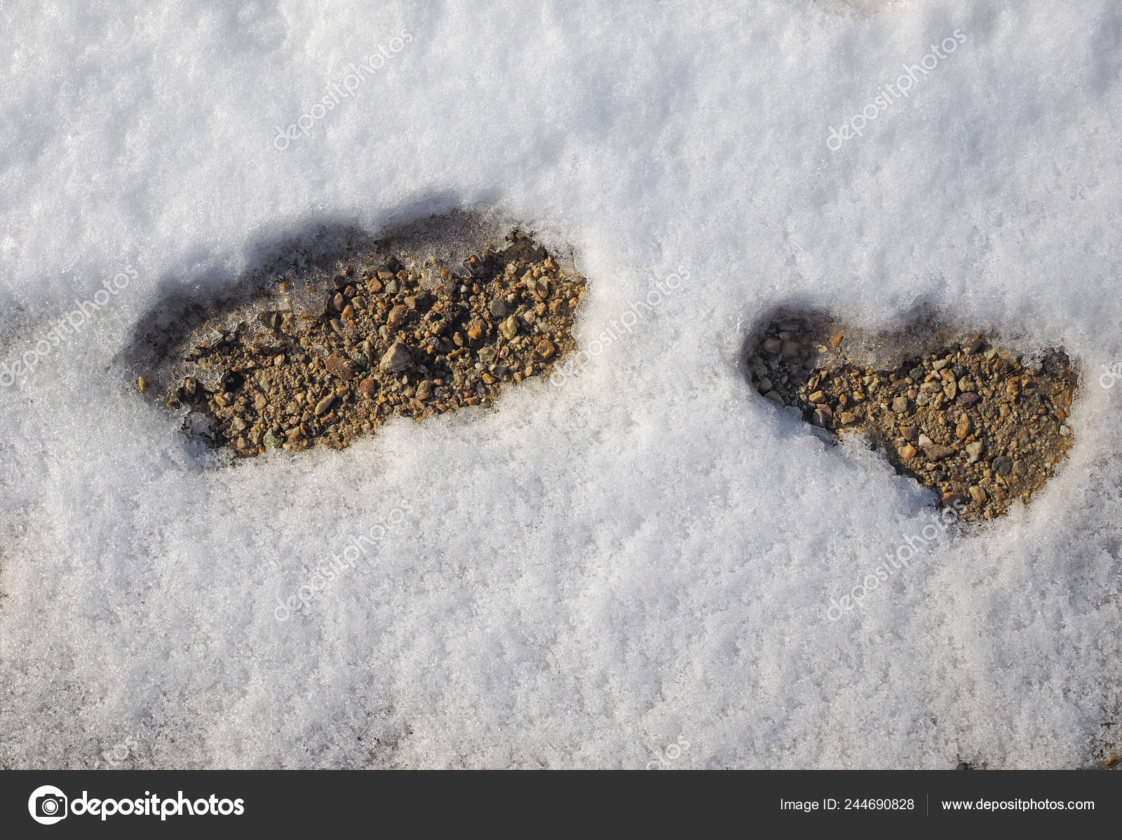 Footprints Impressions Left Person Walking Snow — Stock
