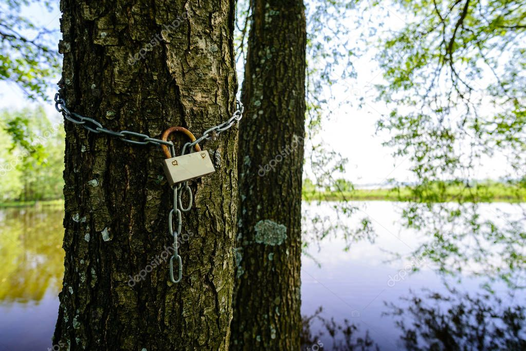 Old metal lock on the tree near the lake. Symbol of strong and e