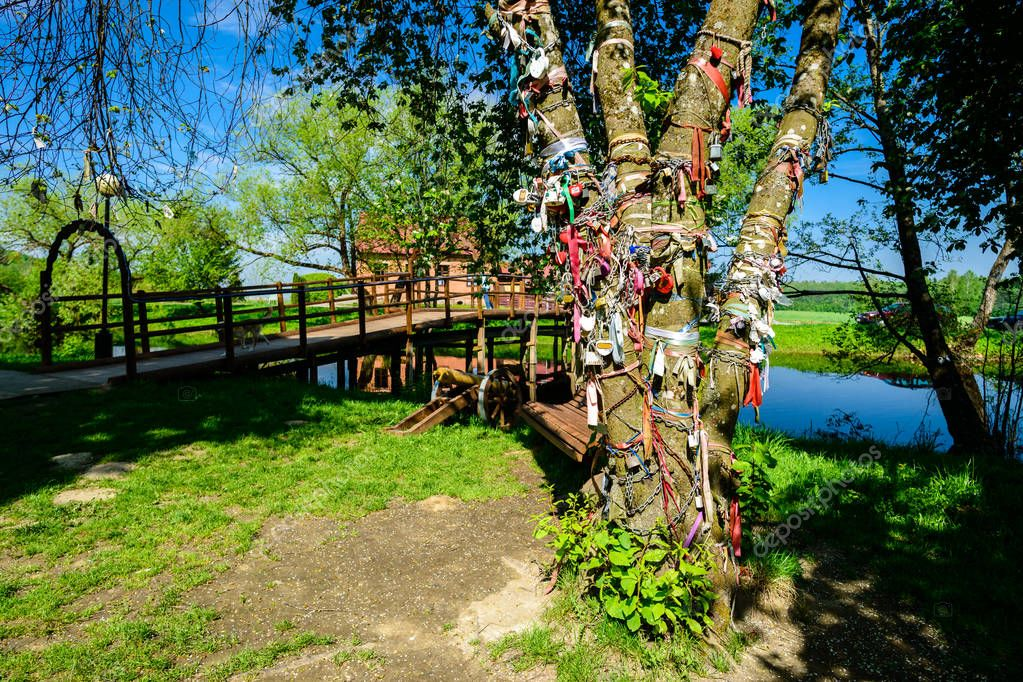 Old metal locks and ribbons on the tree near the lake. Symbol of
