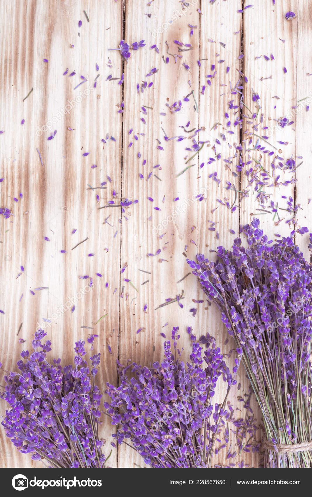 Lavender Dried Flowers Bouquets On Wooden Desk Top View Closeup Stock Photo C Gshanshin 228567650