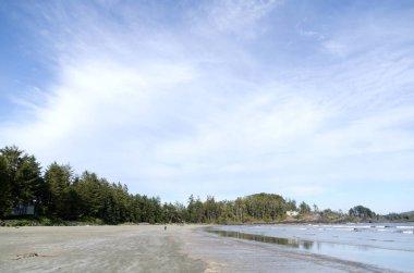 Summer hikes on Chesterman beach