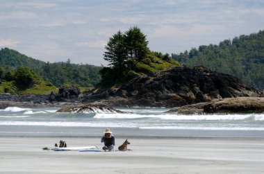 Beachgoer on a chair and her shepherd next to a  surfboard