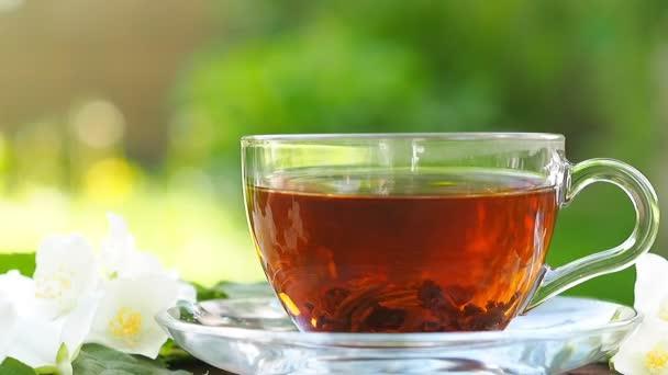 Odhrané listy černého čaje ve skleněném šálku na dřevěném stole, na pozadí přírody. Koncepce potravin.