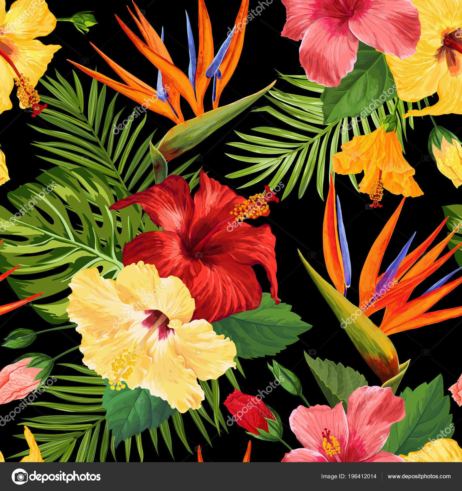 Reticolo senza giunte dell\u0027acquerello fiori tropicali. Fondo disegnato a  mano floreale. Disegno di fiori Hibiskus fiore esotico per tessuto,  tessile,