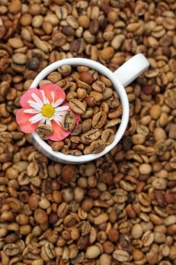 medium roasted coffee beans with white  porcelain cup