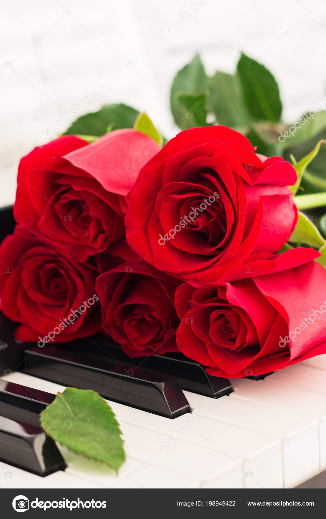 Red Roses Piano Keys Romantic Music Background — Stock Photo