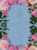 Gyönyörű, természetes keret rózsaszín rózsákkal, kék, szövet háttér