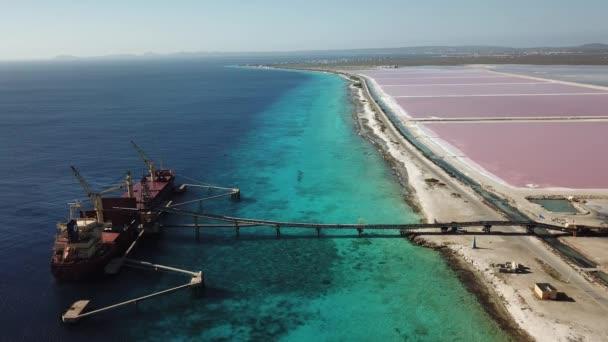 rose caribbean salt lake Bonaire island aerial drone top view 4K UHD video