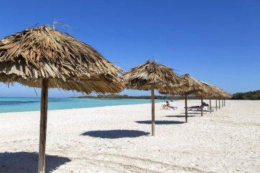 Sun umbrellas on the beach of palm leaves. Horizontally.