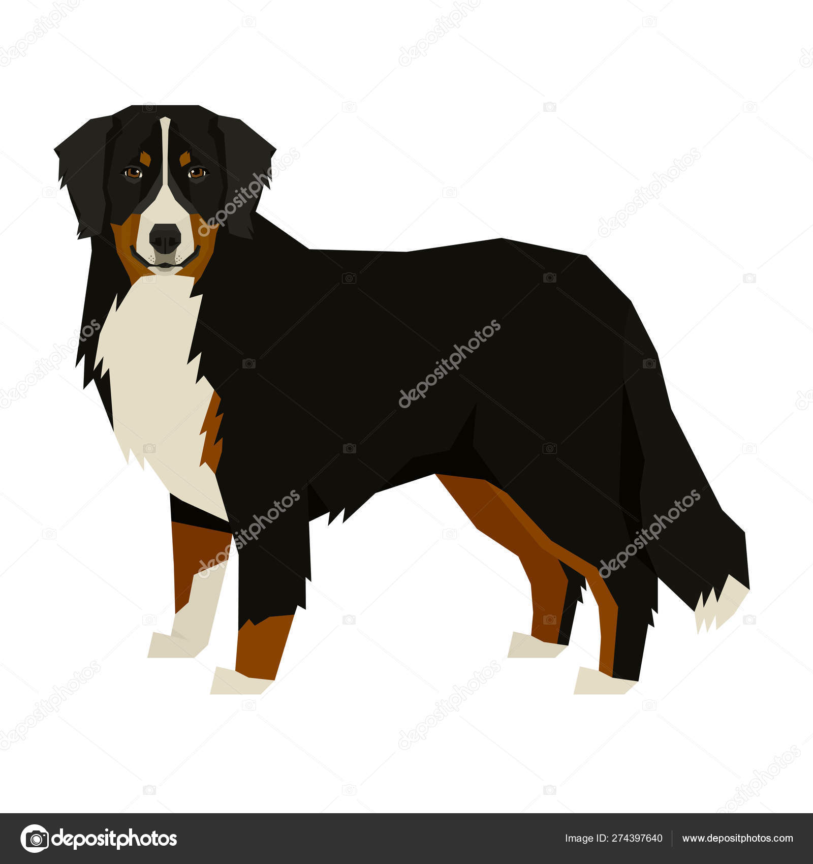 Dog Collection Bernese Mountain Dog Geometric Style Isolated