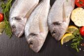 Fotografie syrové ryby dorado a koření
