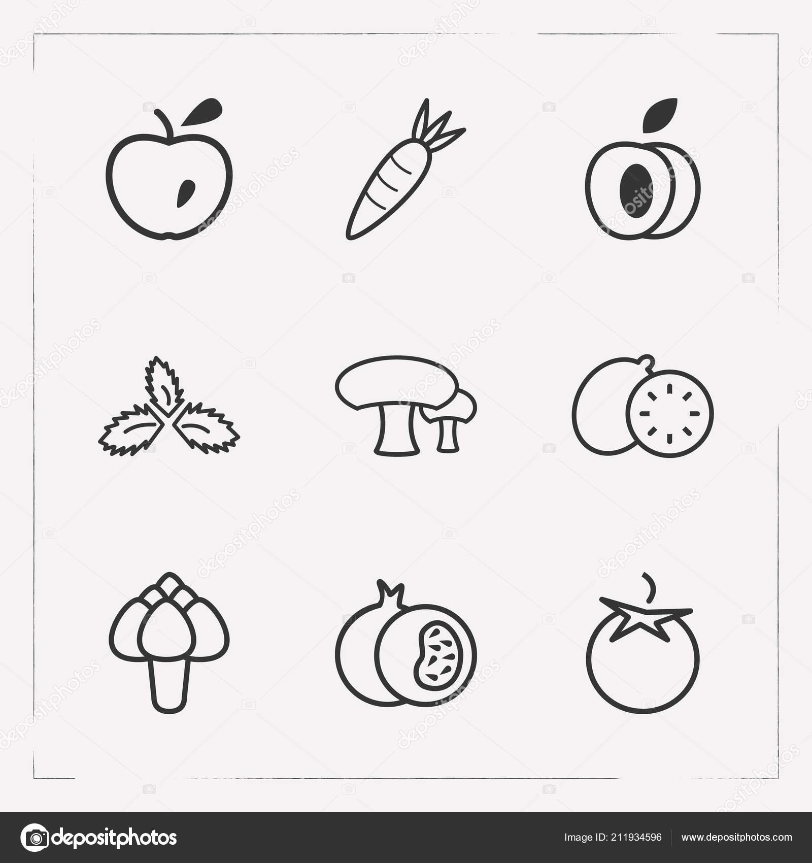Set of vitamin icons line style symbols with mushroom, artichoke