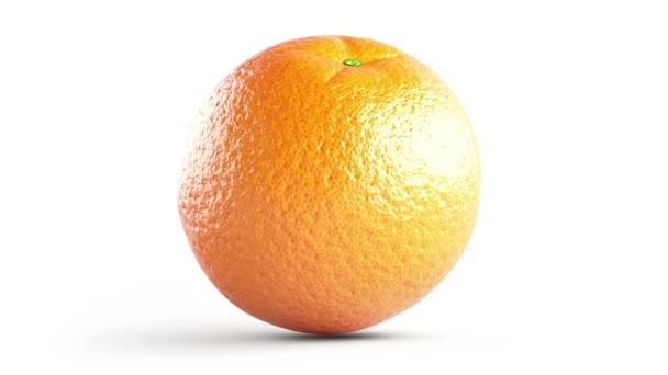 Grid of the orange, Looping footage