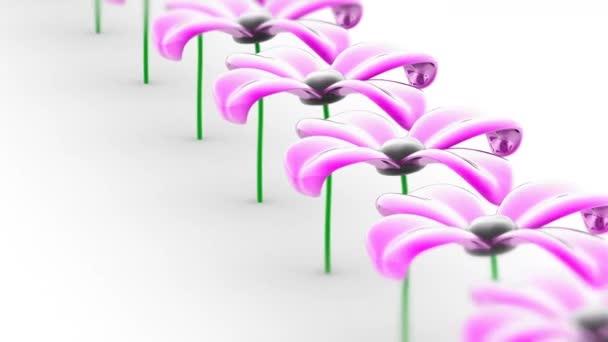 A virág. Hurok felvétel van 4 k felbontású. ProRes 4444. 3D-s illusztráció.