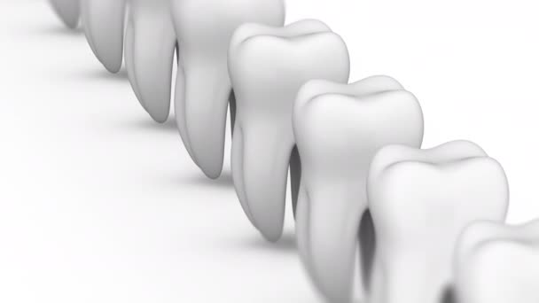 Tooth. Looping footage has 4K resolution and alpha channel. Prores 4444.