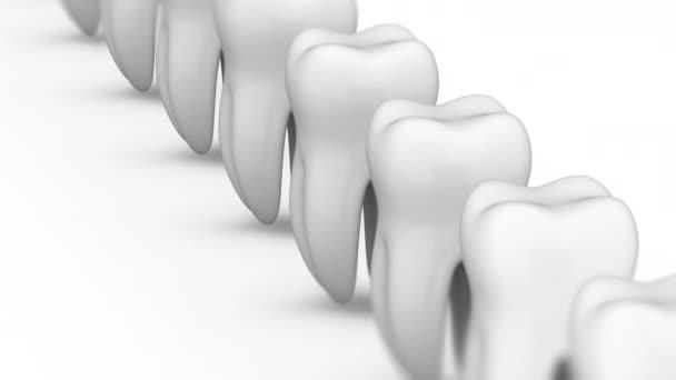 Zahn. Looping-Material hat 4k-Auflösung und Alpha-Kanal. Vorbericht 4444.