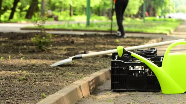 gardening tools with man prepearing lawn for seedlings at background