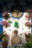Typical andalusian courtyard in Cordoba, Andalusia Spain with blue doors and a lot of plants