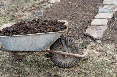 Pile of horse manure on garden - farming and garden work