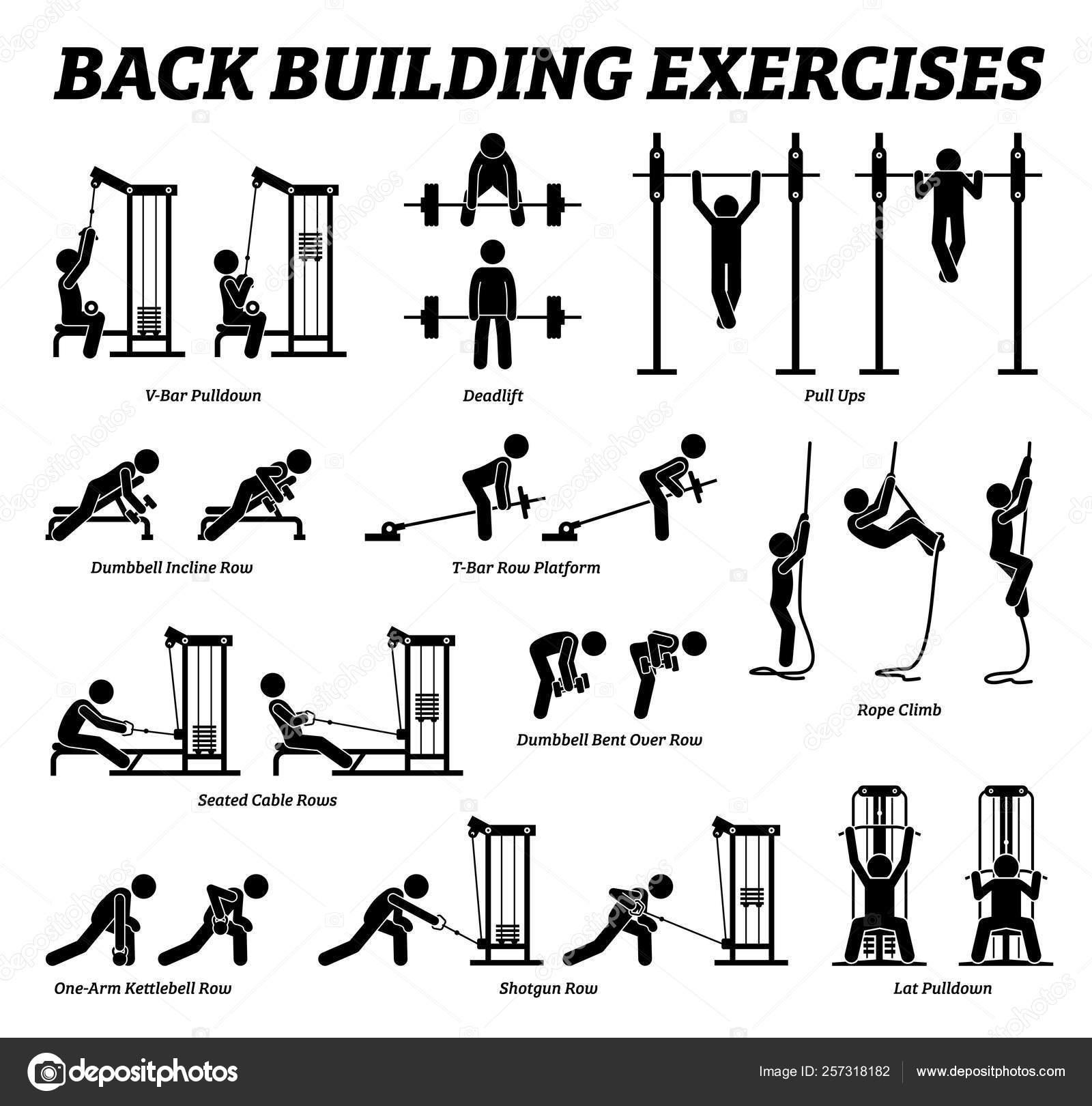 Back Building Exercises Muscle Building Stick Figure Pictograms Artworks Depict Stock Vector C Leremy 257318182