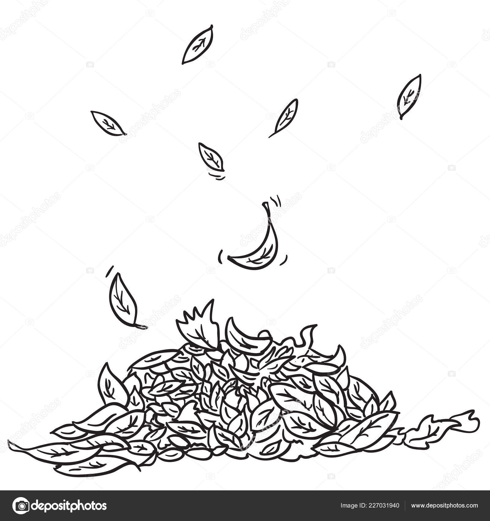 Vector Leaves Cartoon Black And White Black White Pile Leaves Cartoon Illustration Stock Vector C Ainsel 227031940