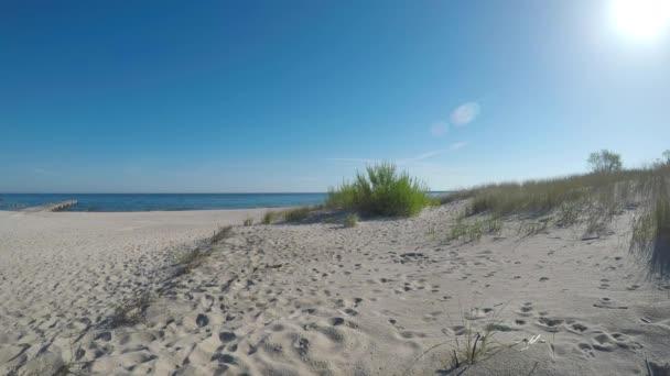Strand der Ostsee mit Strandgras