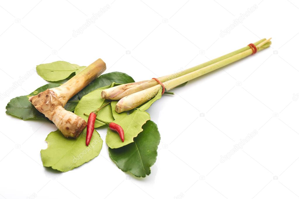thai spicy soup ingredients with galangal,kaffir lime leave, chili, lemongrass on white background