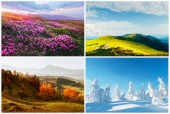 Quattro stagioni la natura paesaggi
