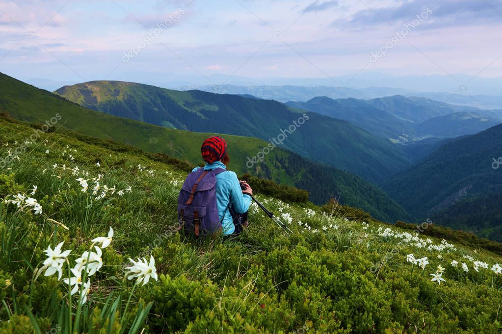 The tourist girl with back sack and tracking sticks sits on the lawn of daffodils. Relaxation. Mountain landscapes. Wonderful summer day. Location the Carpathian Mountains, Marmarosy, Ukraine.
