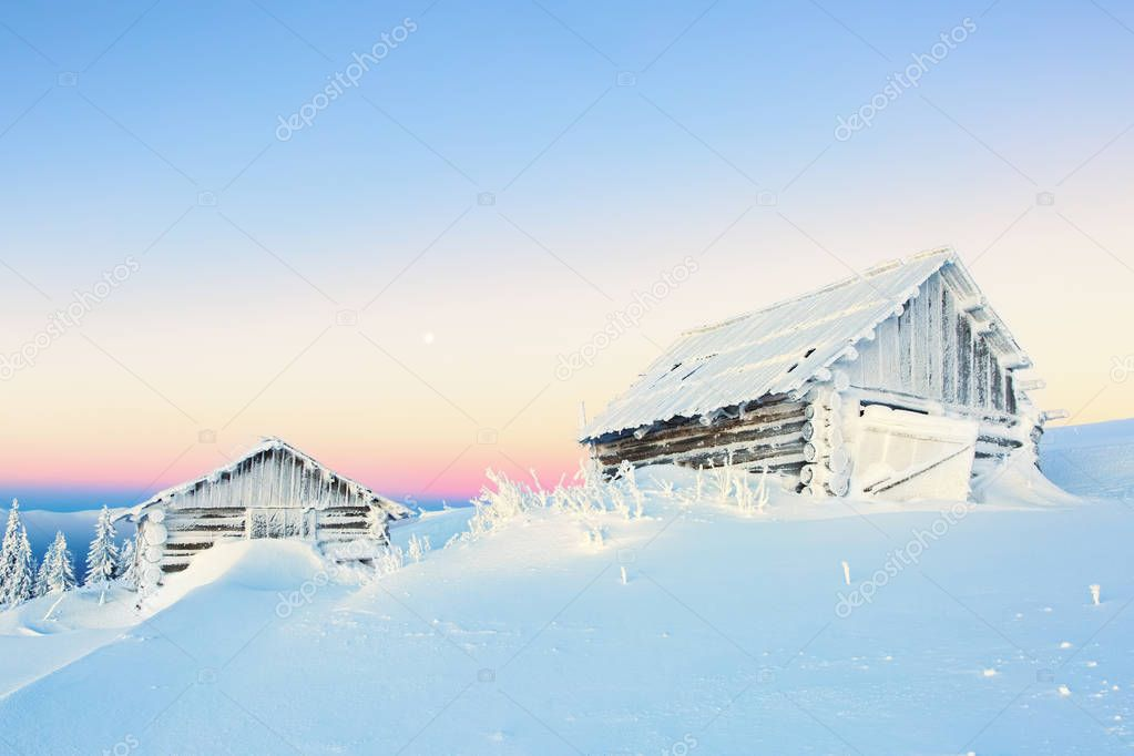 Winter camp for tourist with the harmonic mountain view. Lonely hut without fire among snowy giant. White fair tree on fairytale  day